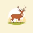 Вікторина – вгадай де проживає ця тварина